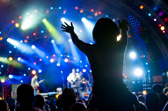 """Photographic Images by David: https://www.pleasure-house-for-adults.com &emdash; """"Fans at Rock Concert"""" image is used on Music-Videos-and-More.com."""